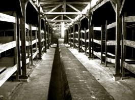 Barak in Auschwitz - Foto: stock.xchng
