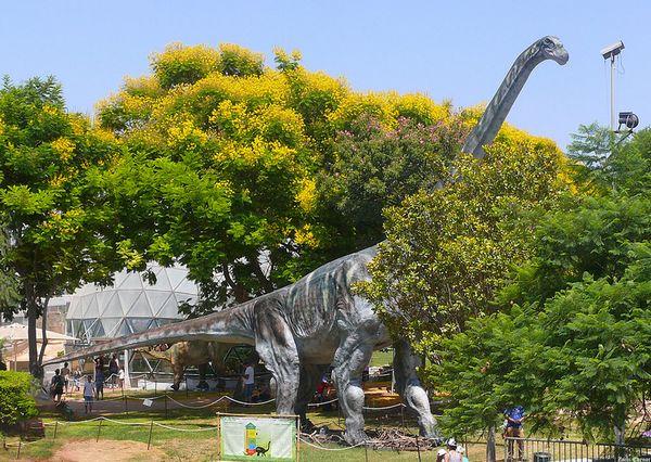 Argentinosaurus, een dinosaurus waar de Titanosaurus erg op leek - cc