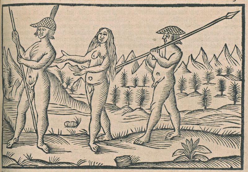 Journael van de wonderlijcke voyagie, 1684