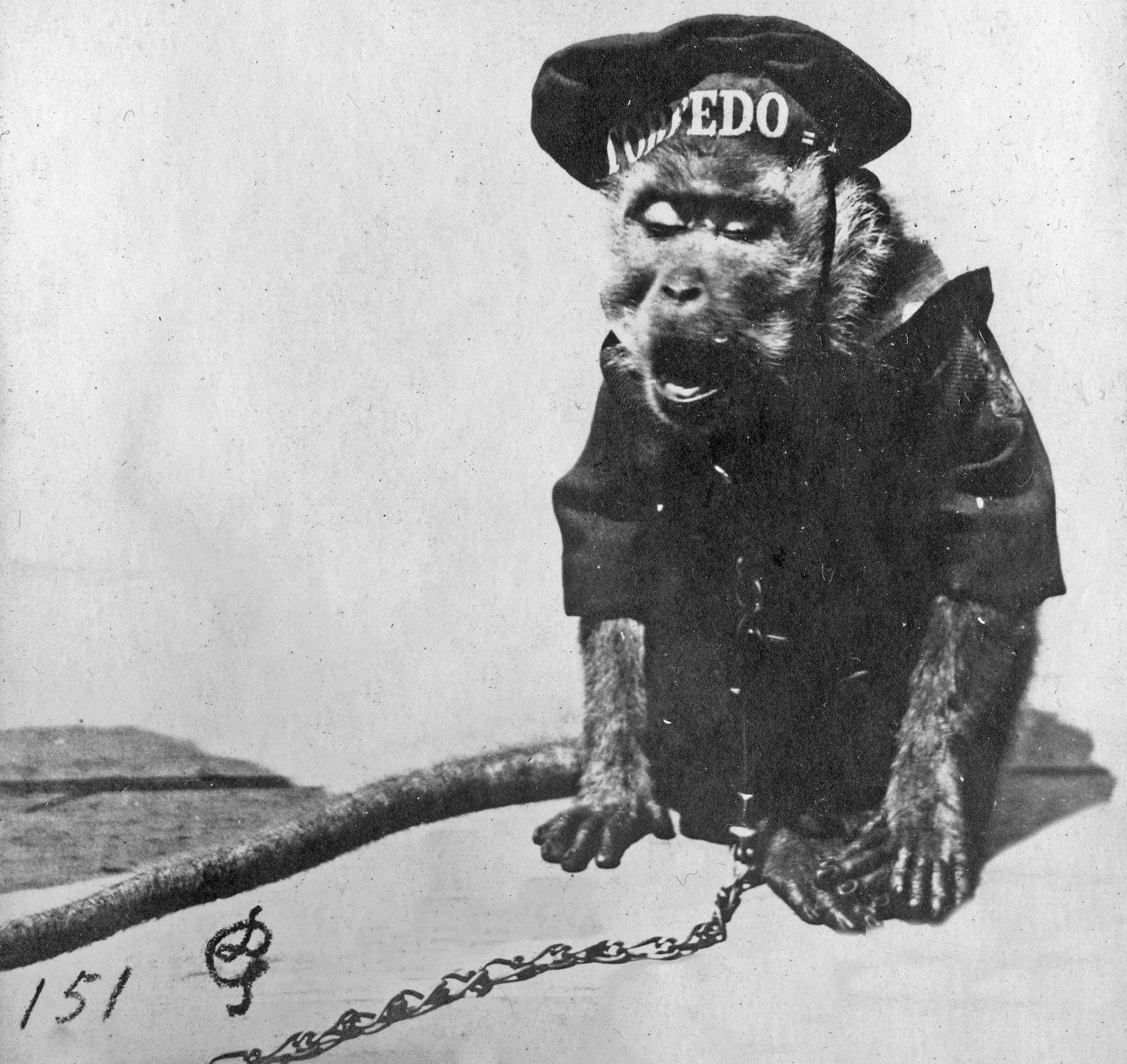 Aapje Torpedo - Zeeuws Archief