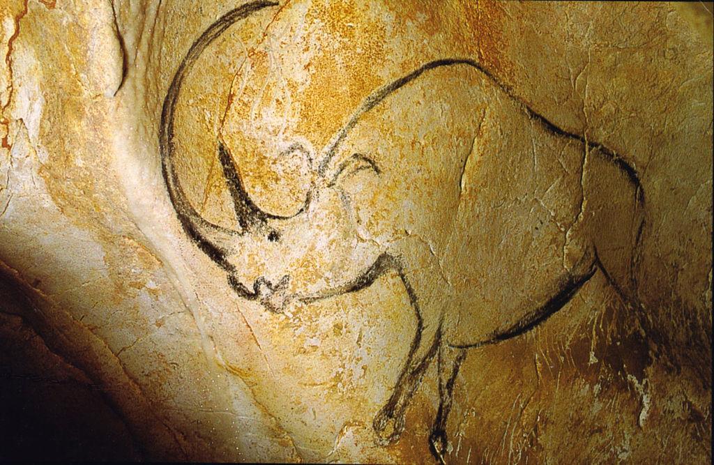 Tekening van een neushoorn in de grot