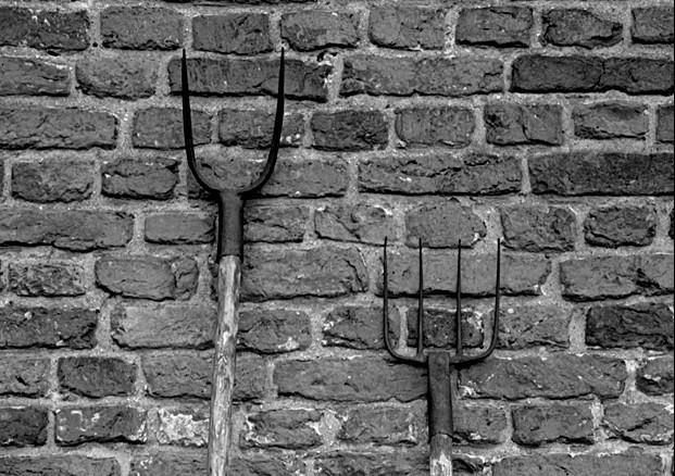 Gaffel en greep - © Henk Boudewijns