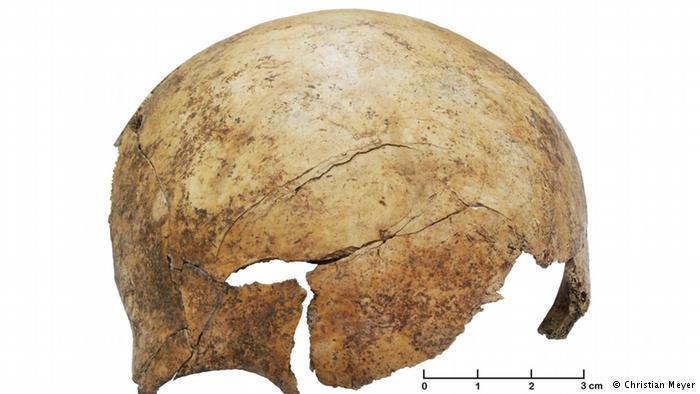 Een van de ingeslagen schedels (Christian Meyer)