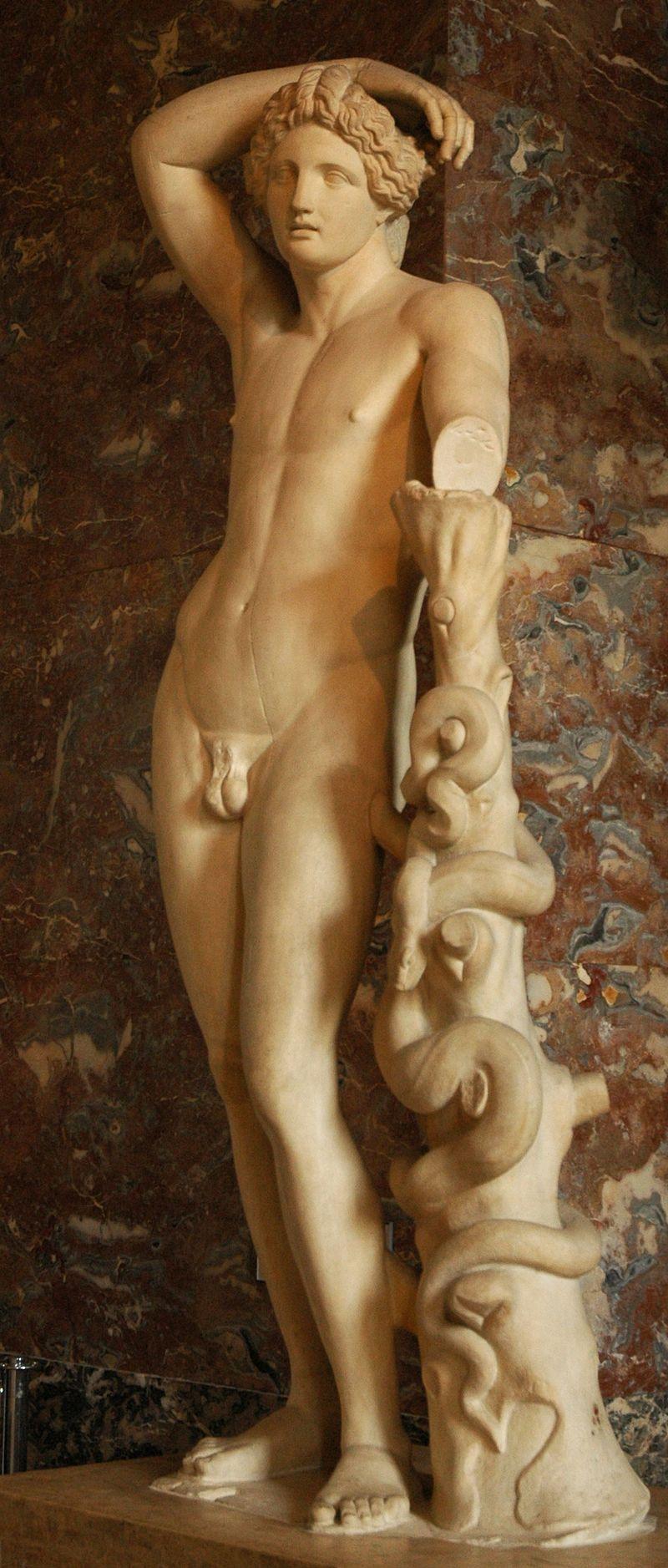 Apollon Lykios (Romeinse kopie van een 4e-eeuws Grieks origineel, Louvre).