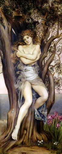 Boomnimf  (dryade) - Evelyn De Morgan