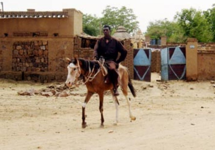Een Janjaweed te paard (Publiek Domein - wiki)