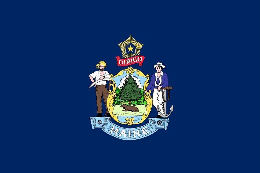 """Vlag van de Amerikaanse staat Maine, de """"Pine Tree State"""""""