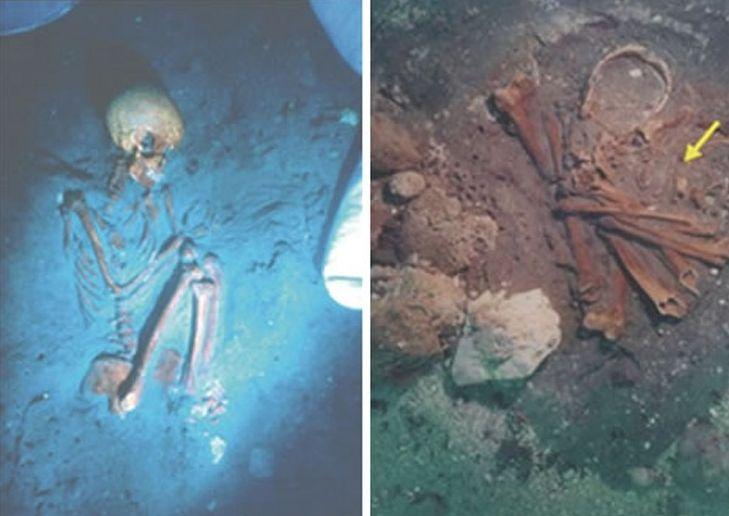 De bij de Atlit-Yam site gevonden beenderen (foto: University College London)