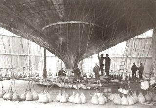 Örnen in een hangar