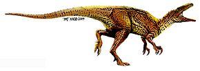 Drie dinosaurussoorten ontdekt in Australië