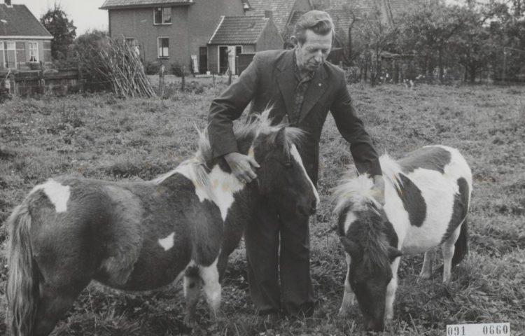 Boer Koekoek met twee van zijn pony's (CC0 - Eric Koch / Anefo)