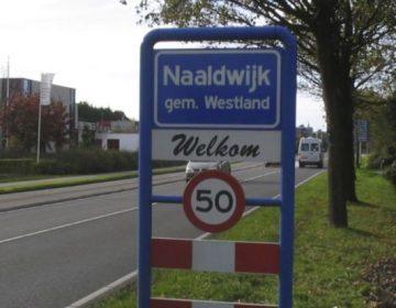 Naaldwijk (CC BY-SA 3.0 - M.Minderhoud - wiki)