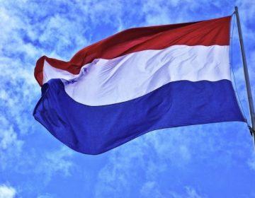 Nederlandse vlag (cc0 - Pixabay - MabelAmber)