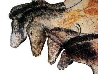 Afbeeldingen van enkele paarden in de Chauvet-grot (Publiek Domein - wiki)