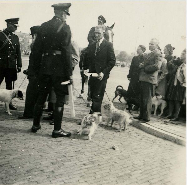 Inbeslagname van honden – Foto: Karel Bönnekamp