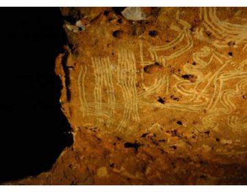 Willekeurige afbeelding van een vingertekening in de grot van Rouffignac (CC BY 2.5 - Sharpe & Van Gelder - wiki)