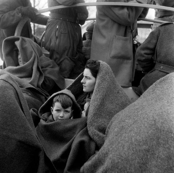 Evacuatie tijdens de Watersnoodramp, stavenisse, 1953 – Ed van Wijk, collectie Nederlands Fotomuseum