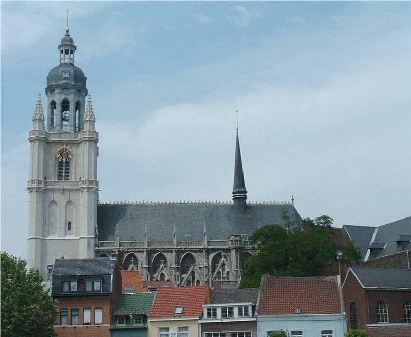 Sint-Martinusbasiliek (Halle) - cc