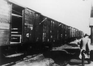 Trein bij Westerbork