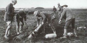 'De Draak van de Somme'