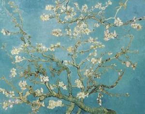 Van Goghs 'Amandelbloesem'