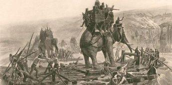 Dierenlef en dierenleed in de oorlog