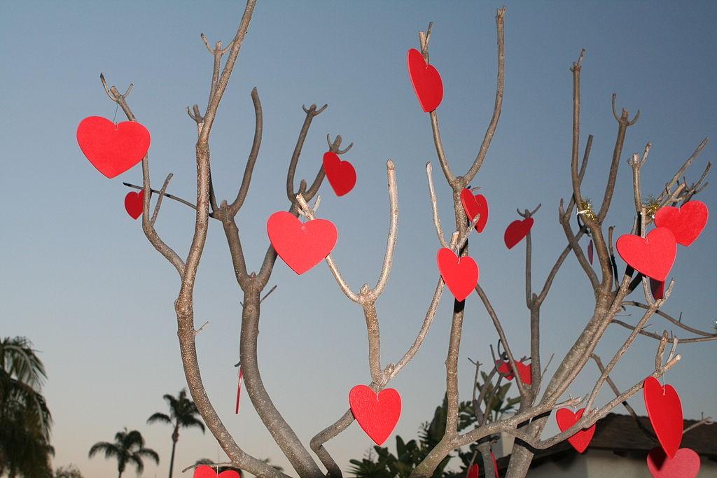Versierde boom voor Valentijnsdag - cc