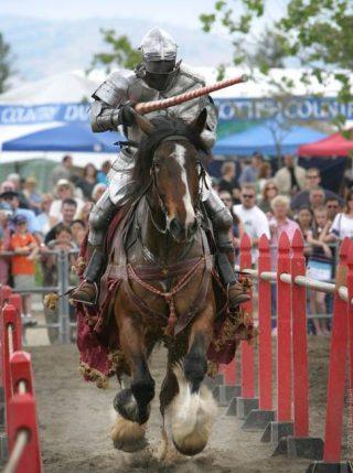 Ridder met gesloten vizier (CC BY 2.5 - David Ball - wiki)