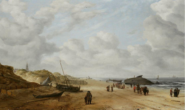 Gerestaureerde schilderij van Hendrick van Anthonissen, mét walvis (Fitzwilliam Museum)
