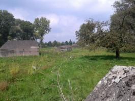Betonnen groepsschuilplaatsen liggen verspreid over het terrein. (Kevin Prenger)