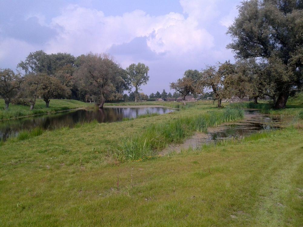 Twee vijvers in het midden van het terrein, die hier zich ook al tijdens de periode 1914-1918 bevonden, maar verland waren geraakt. (Kevin Prenger)