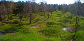 Verboden bossen rond Verdun