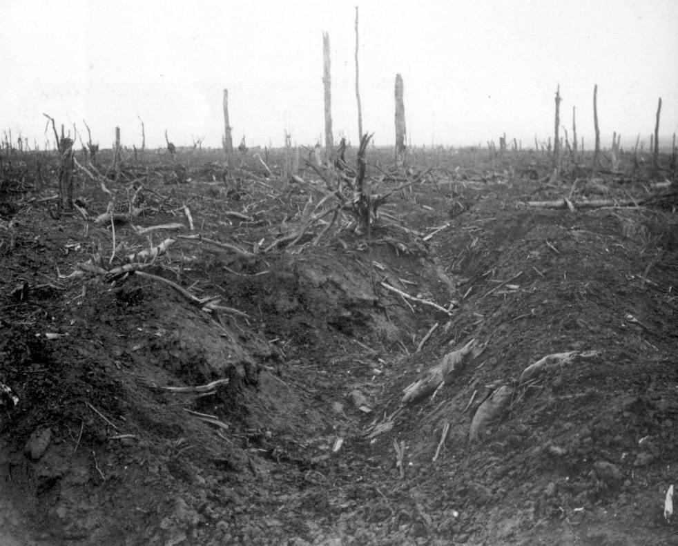 Delville Wood, september 1916