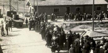 Foto's uit het Auschwitz Album van Lili Jacob
