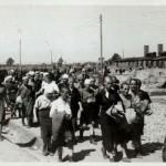 Een typische dag in Auschwitz