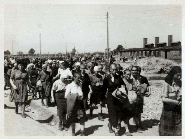 Kaalgeschoren vrouwen, geselecteerd voor dwangarbeid (Auschwitz Album, mei 1944)