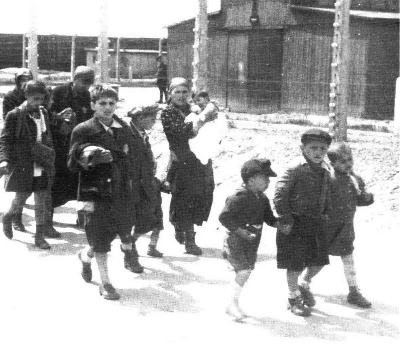 Kinderen in Auschwitz kort na aankomst in het kamp (Auschwitz Album, mei 1944)