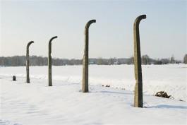 Betonnen kamppalen als stille getuigen van de geschiedenis. © Hans Citroen