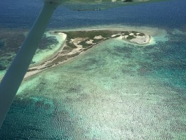 Beacon Island - cc
