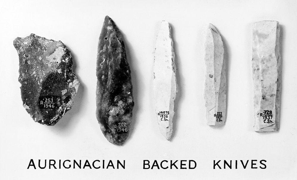 Aurignacientechniek werktuigen – periode van 47 tot 37 duizend jaar geleden (foto: wiki-Wellcome Library)