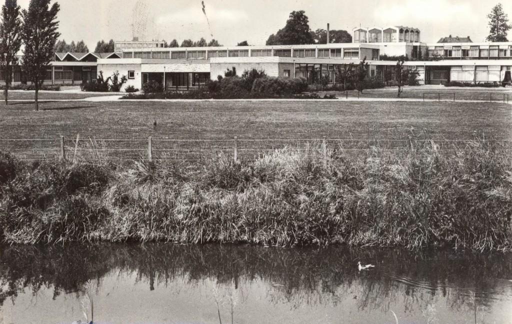 Een eenzaam eendje in de Graafsche Raam - in de jaren zestig zwom hier een eenzame zwaan, op zoek naar gezelschap...