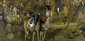 Wexy: de lotgevallen van een koninklijk strijdpaard