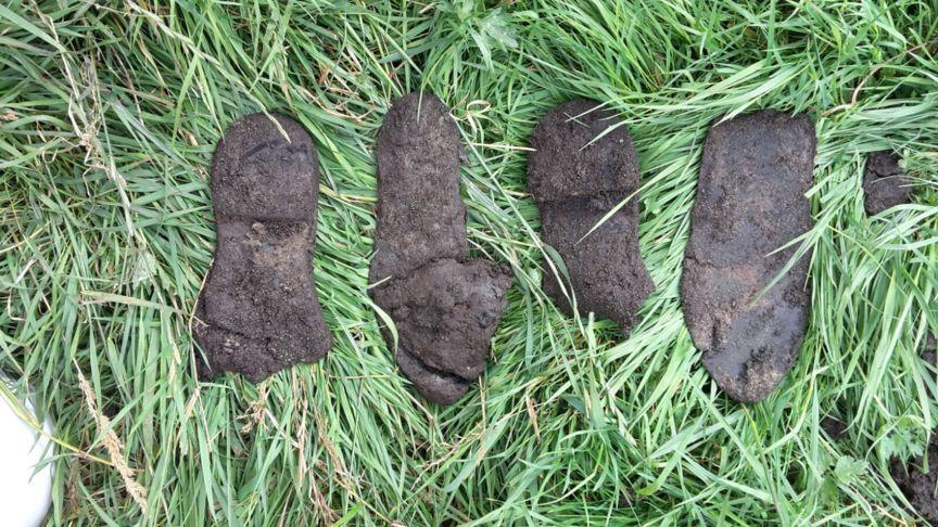 Enkele van de gevonden schoenen (Arcadis)