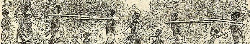 Geschiedenis van de slavernij