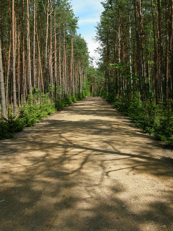 Himmelfartstrasse (Wiki)