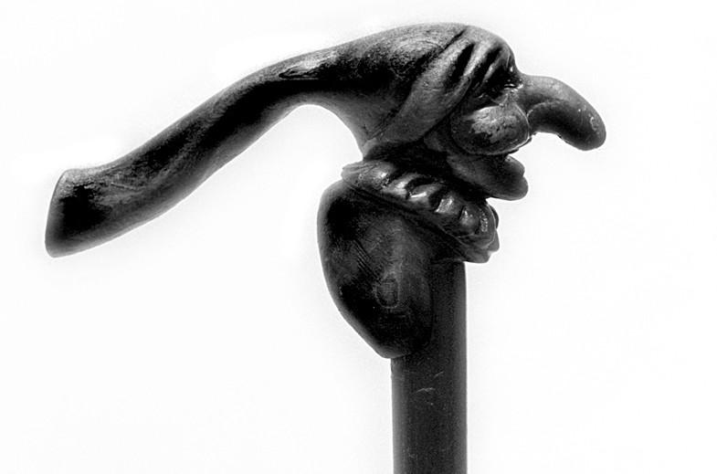 Zotstok - © Henk Boudewijns
