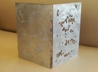 Yusef Komunyakaa, Love in the time of war, Robin Price, 2013