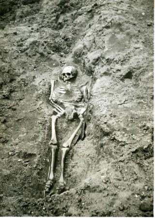 Eén van de skeletten die door de studenten van Arie de Froe werden opgegraven.