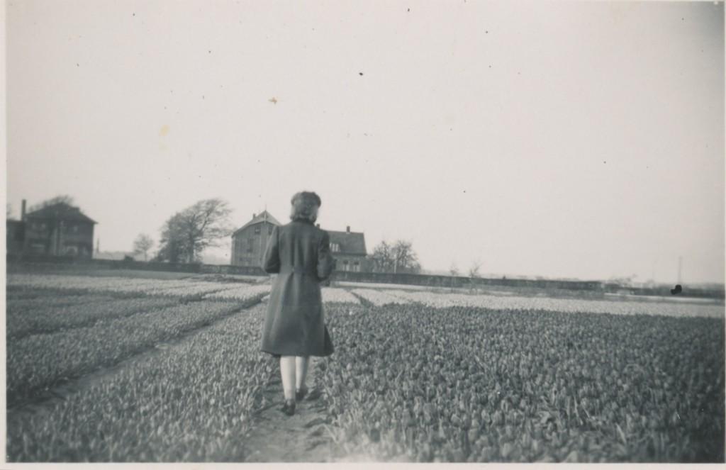 Van Waveren familiealbum - Vrouw in bollenveld, 1955