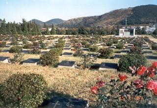 Op het ereveld Tanggok in Busan (Zuid-Korea) liggen 122 Nederlandse militairen begraven die tijdens de Koreaans Oorlog tussen 1950 en 1953 gesneuveld zijn. (Foto Taekwondo Bond Nederland)